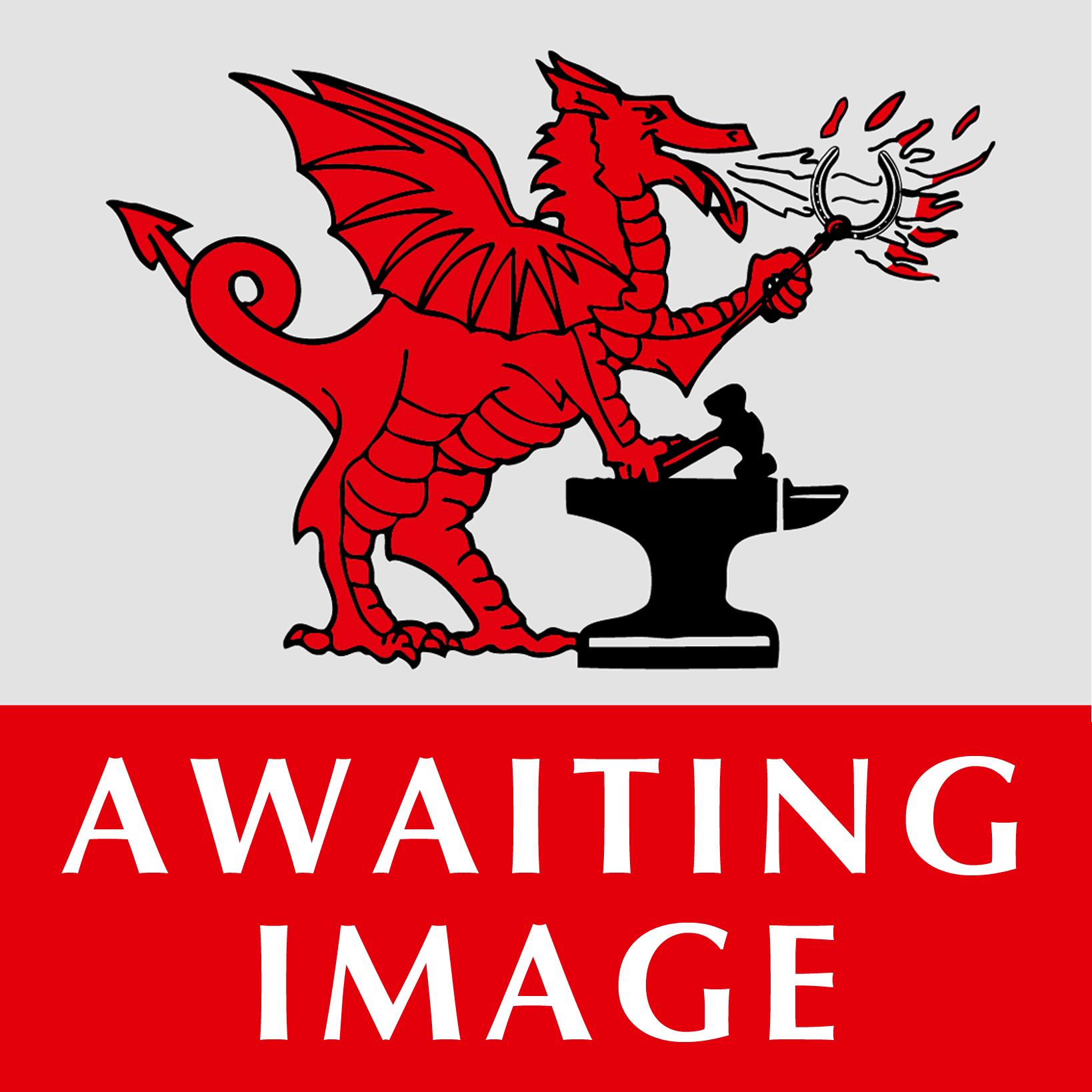 Tool & Fullering stamp