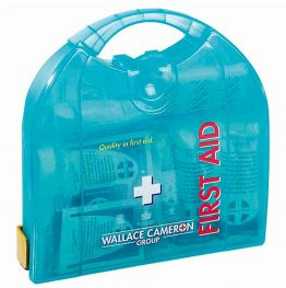 Delux First Aid Kit (large)