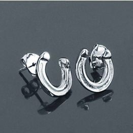 Small Concave Earrings in Silver